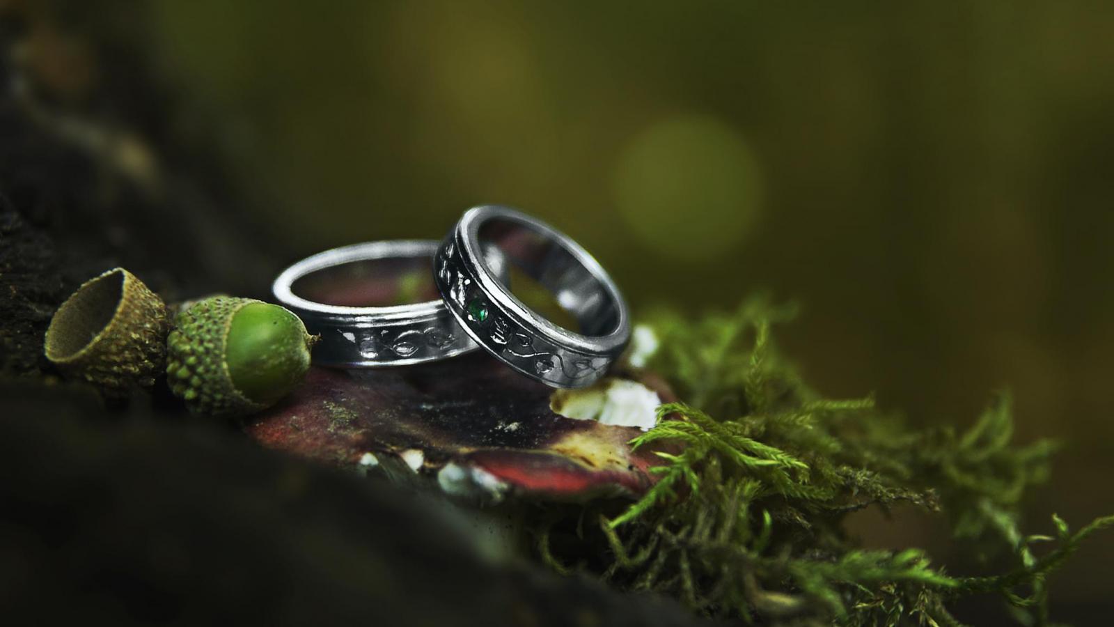 2 v 1 - Sladěné snubní prsteny a šperky